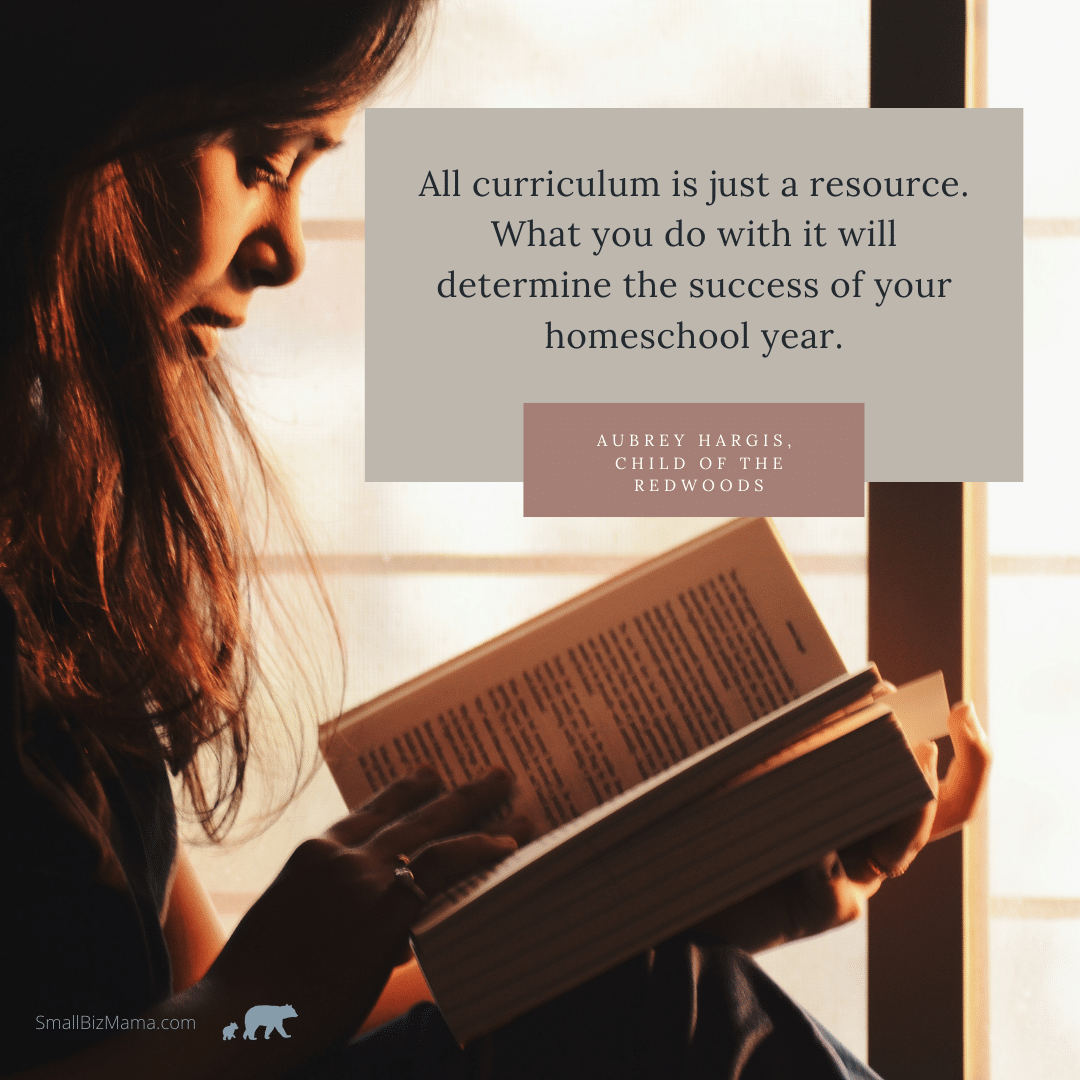 All curriculum is just a resource. What you do with it will determine the success of your homeschool year.